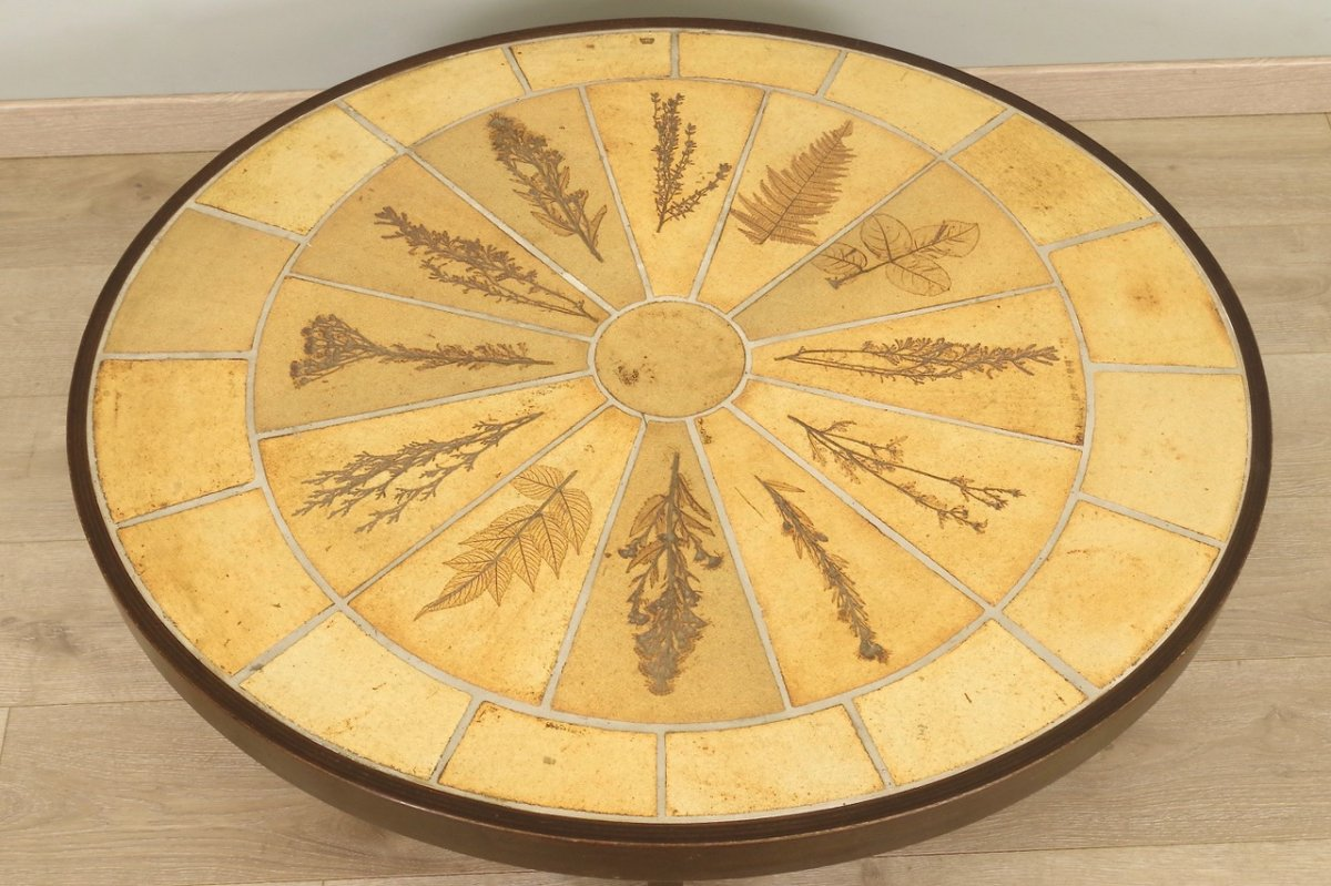 Herbarium Coffee Table By Roger Capron Low Table