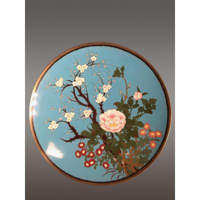 Assiette en Cloisonné Japon Fin XIXe Siècle