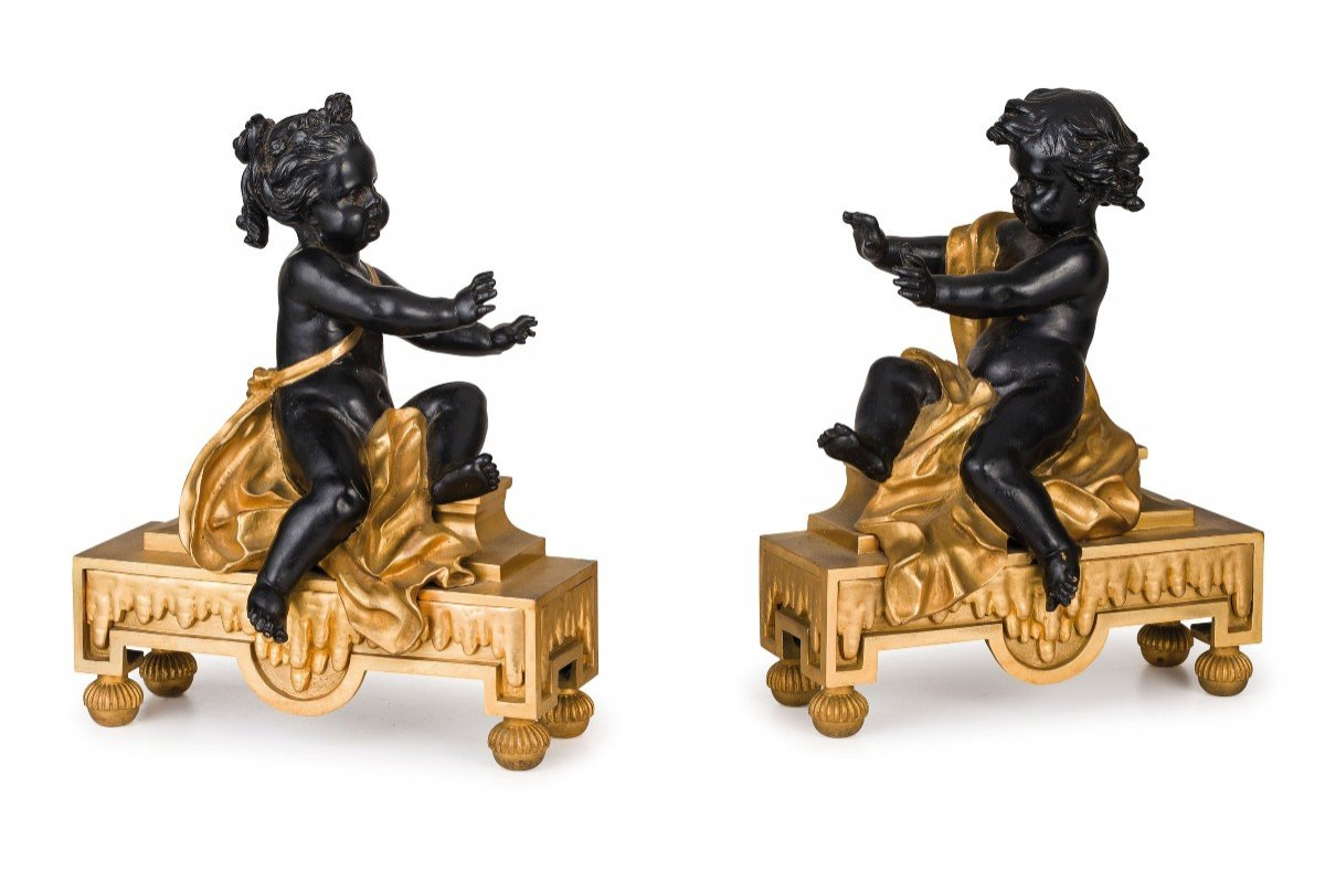 19th Century, Pair Of French Gilt And Dark Patina Bronze Fireplace Chenets