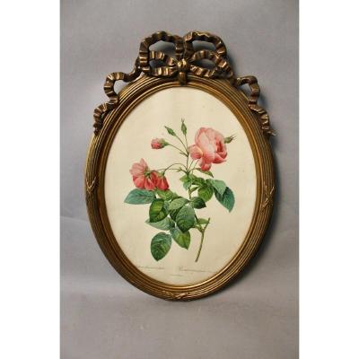 Cadre Ovale De Style Louis XVI Avec Gravure De Rose