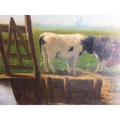 Vaches Au Pâturage XIXeme