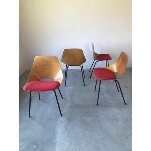 Suite de 4 chaises tonneau par Pierre Guariche, Années 50.