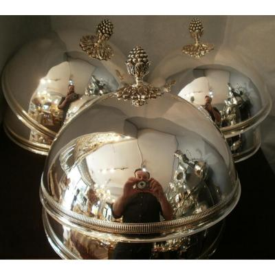 6 Individual Domes Cloches