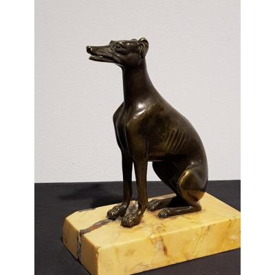 Bronze Greyhound