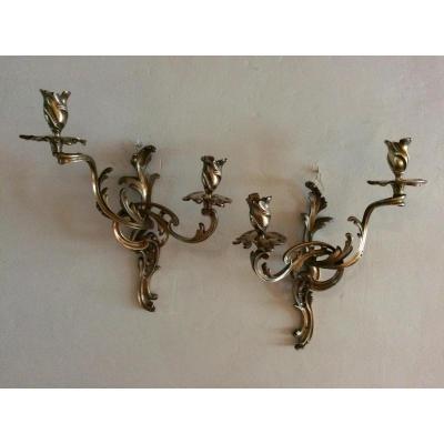 Paire d'appliques à 2 bras de lumières en bronze XIX ème