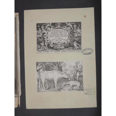 Two Etchings, Late 16th Time, With Postmarks From Collection.