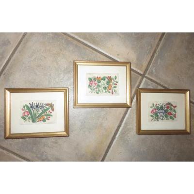 Trois Aquarelles Papillons Et Fleurs, Sur Papier De Riz, époque 19ème.