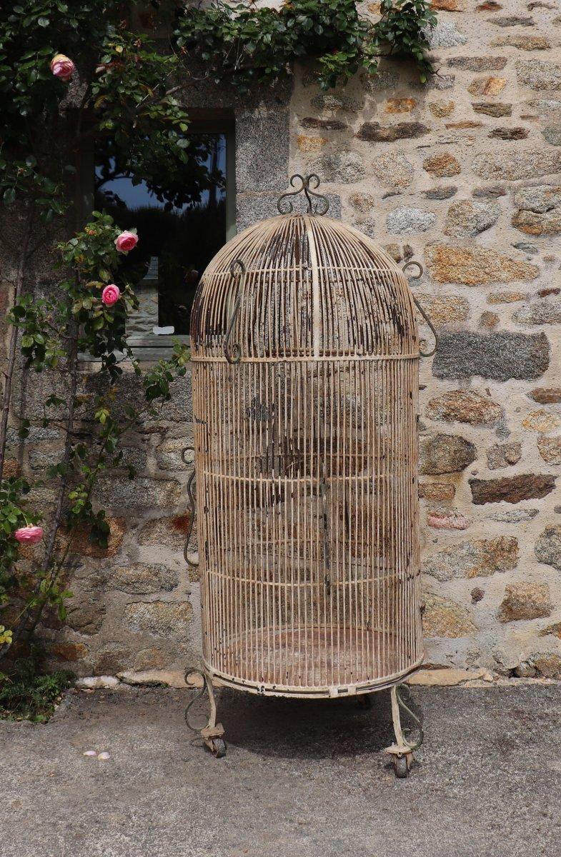 Grande Volière 1900, Fer Forgé, Cage à Oiseaux