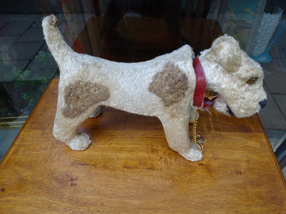 Fox Terrier 1940