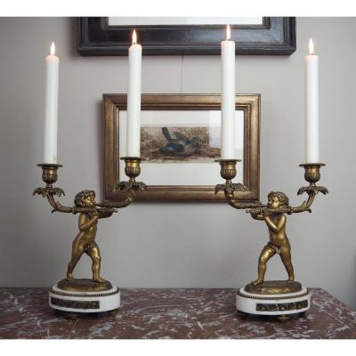 Paire De Candélabres à 2 Branches En Bronze Et Marbre De Style Louis XVI
