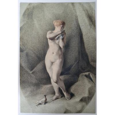 Anonymous XIXth Century - Naked Woman With Pigeon