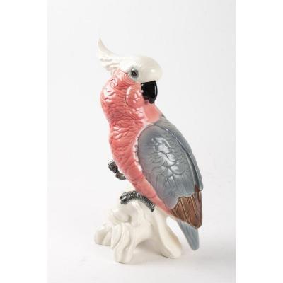 Important Cacatoès Gris Marron Et Rose (rare) Porcelaine Anglaise Beswick 20ème Siècle