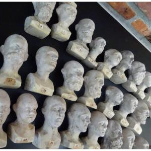 Phrenology ... 44 Busts ... What Contingent ...