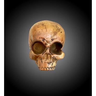 Mémento Mori, Skull, France Early XIXth