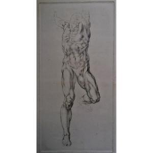 Gravure-ecorche - Anatomie - Etude - Etude Anatomique D Un Homme -