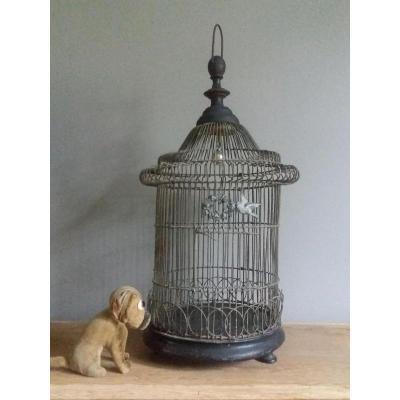 Cage à Oiseaux.... .xixîém