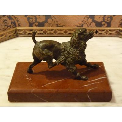 Caniche Se Grattant, Bronze Et Marbre Griotte, Vers 1900-1920