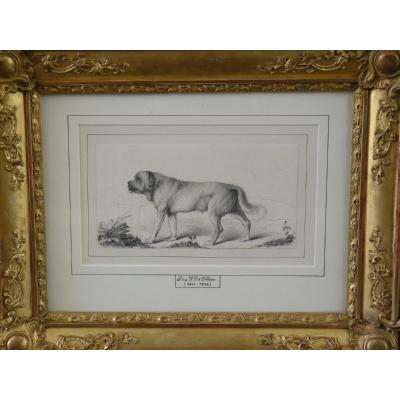 Duc d'Orléans, Dog Drawing, Collection Of The Count Of Paris