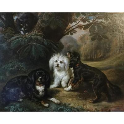 """""""dogs And Cats"""" By François Gabriel Lépaulle"""