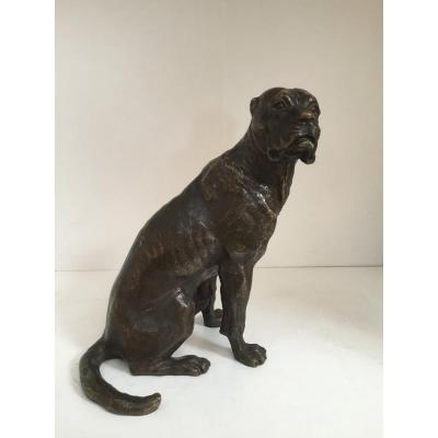 Bronze Seated Dog With Brown Patina, 19th Century