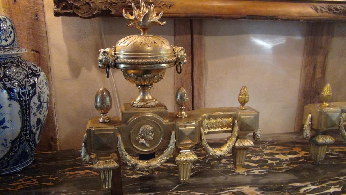 Paire De Chenets En Bronze Doré De Style Louis XVI