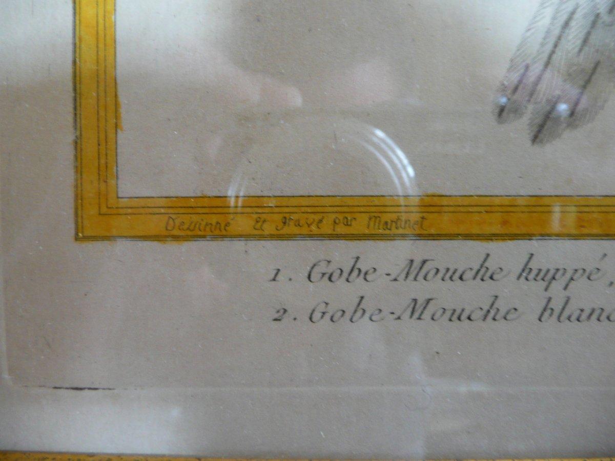 Gravure Aquarellée Martinet Fin XVIIIème