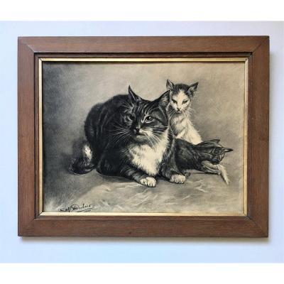 "Alfred Dubois( XIX-XX). ""Chats"". 1900. Dessin."