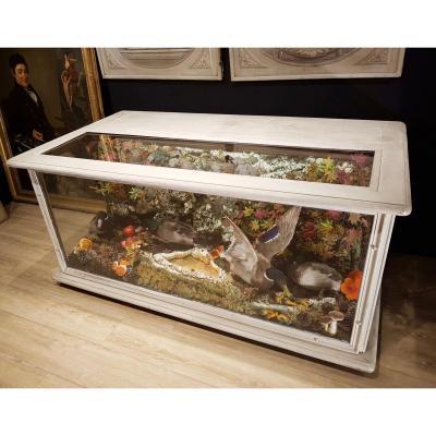 Comptoir Showcase Taxidermy, Hunting Decor, Ducks Naturalized (180cm X 100cm)