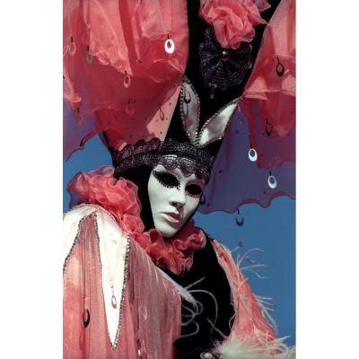 The Venice Carnival. Photos Of Jacques Le Goff.