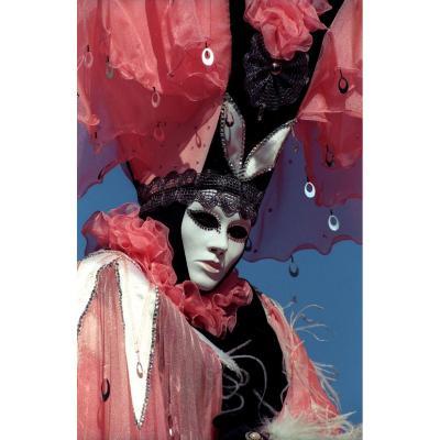 Le Carnaval De Venise. Photos De Jacques Le Goff.