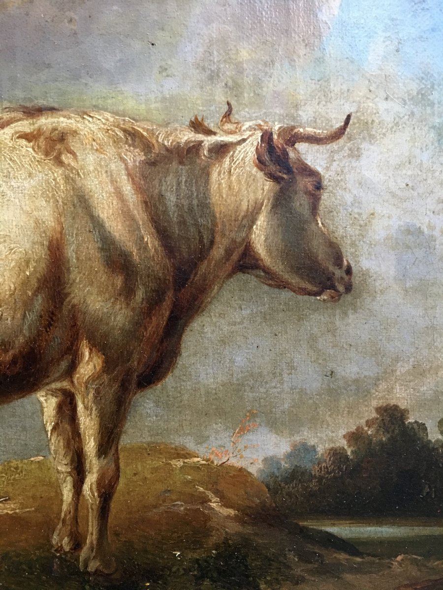 Cow In A Meadow Oil On Canvas XIXth Century-photo-4