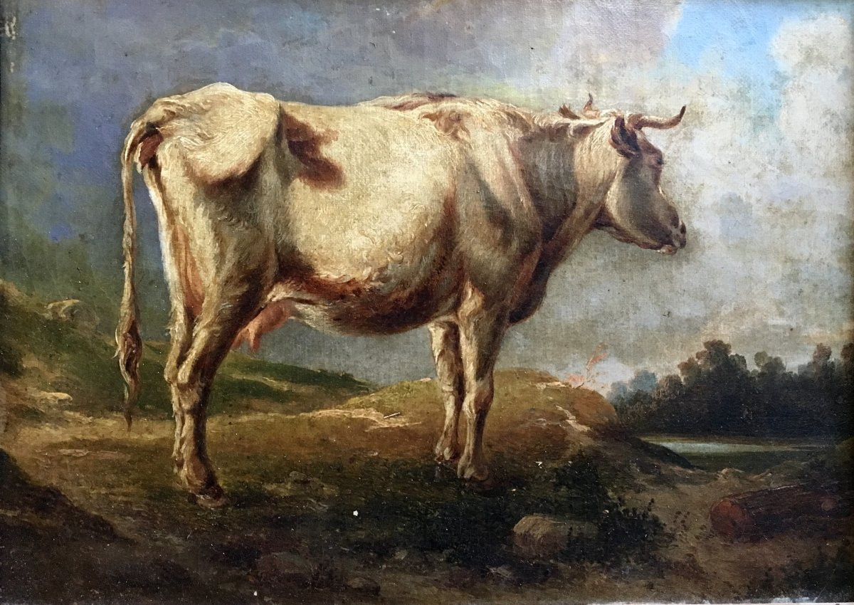Cow In A Meadow Oil On Canvas XIXth Century