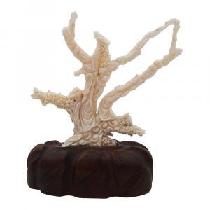 Figure Corail Blanc
