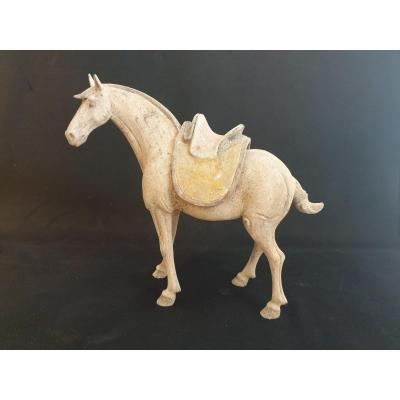 Cheval Dynastie Tang - 37 Cm - Test