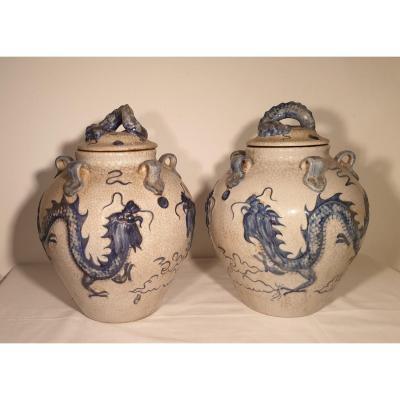 Paire De Jarres Couvertes En Porcelaine De Swatow