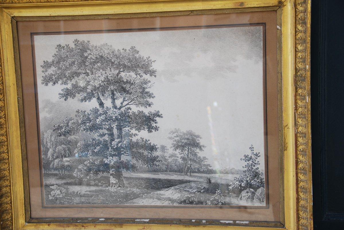 Grand Dessin Paysage Et Arbres Signé De Wartel  .époque Empire XIX