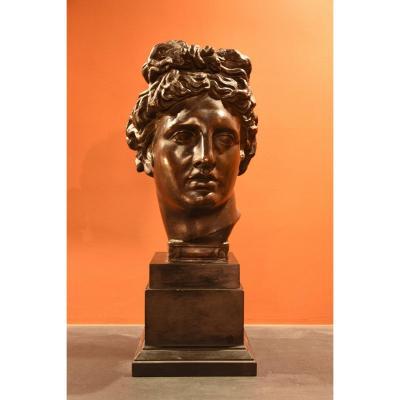 Tête En Bronze De l' Appolon Du Belvédère