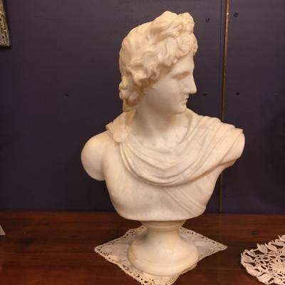Buste d'Apollon  du Belvedere en marbre  de Carrara 19 éme
