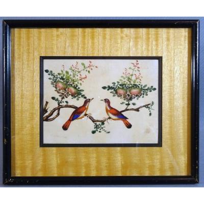 Chine Canton XIXeme Siècle, Gouache sur Papier de Riz, Couple d'Oiseaux sur un Pêcher, symbole d'Amour & Longévité