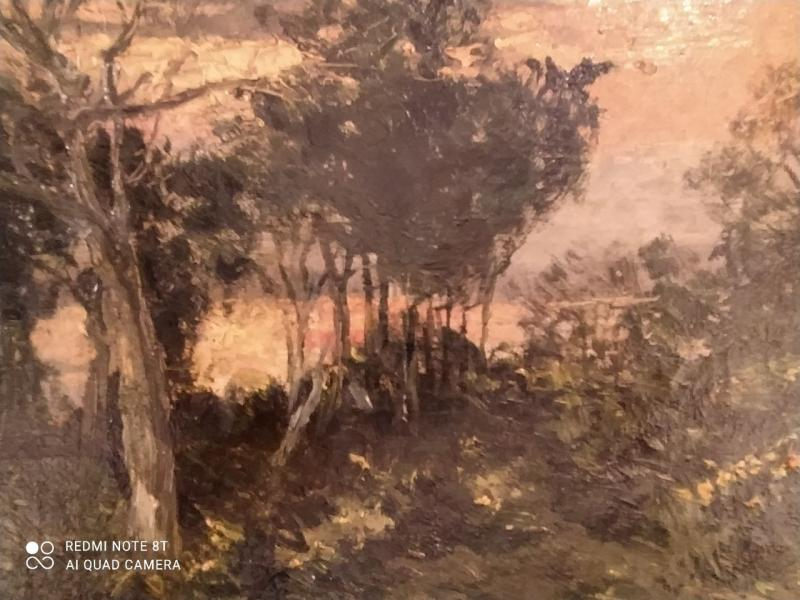 Forest Landscape By F.umoulin-photo-3