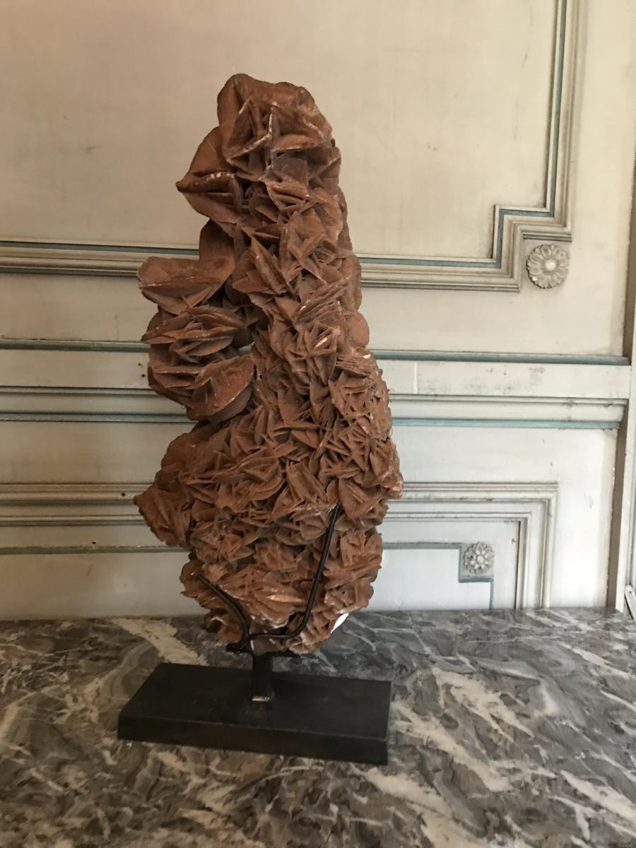 Rose Des Sables Soclée-photo-4