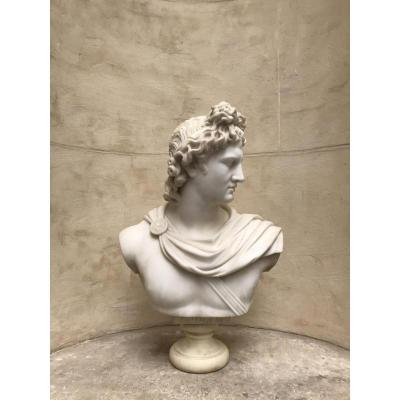 Bust Of The Apollo Belvedere In Marble Around 1830/1850