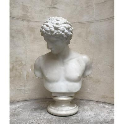 Bust Of Antinous Marble