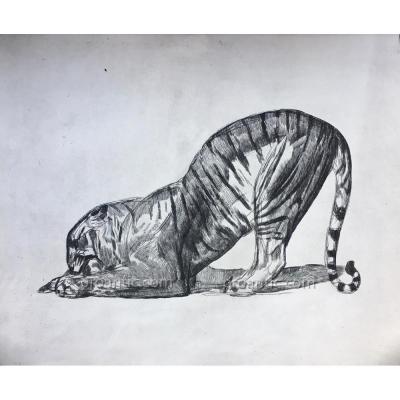 Paul JOUVE (1878-1973): Tigre, eau-forte, 1931