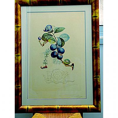"Salvador Dali   ""le Prunier Hâtif"" Et Son Escargot"