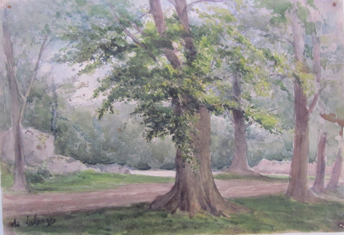 Adolphe Lalauze 1838-1905 Oak In The Forest Of Fontainebleau Watercolor