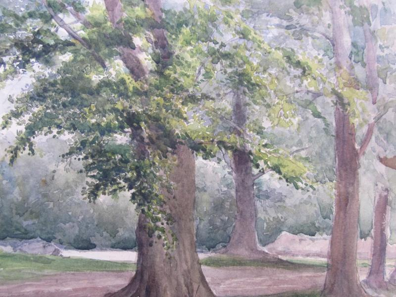 Adolphe Lalauze 1838-1905 Oak In The Forest Of Fontainebleau Watercolor-photo-3