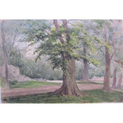 Adolphe Lalauze 1838-1905 Chêne Dans La Forêt De Fontainebleau  Aquarelle