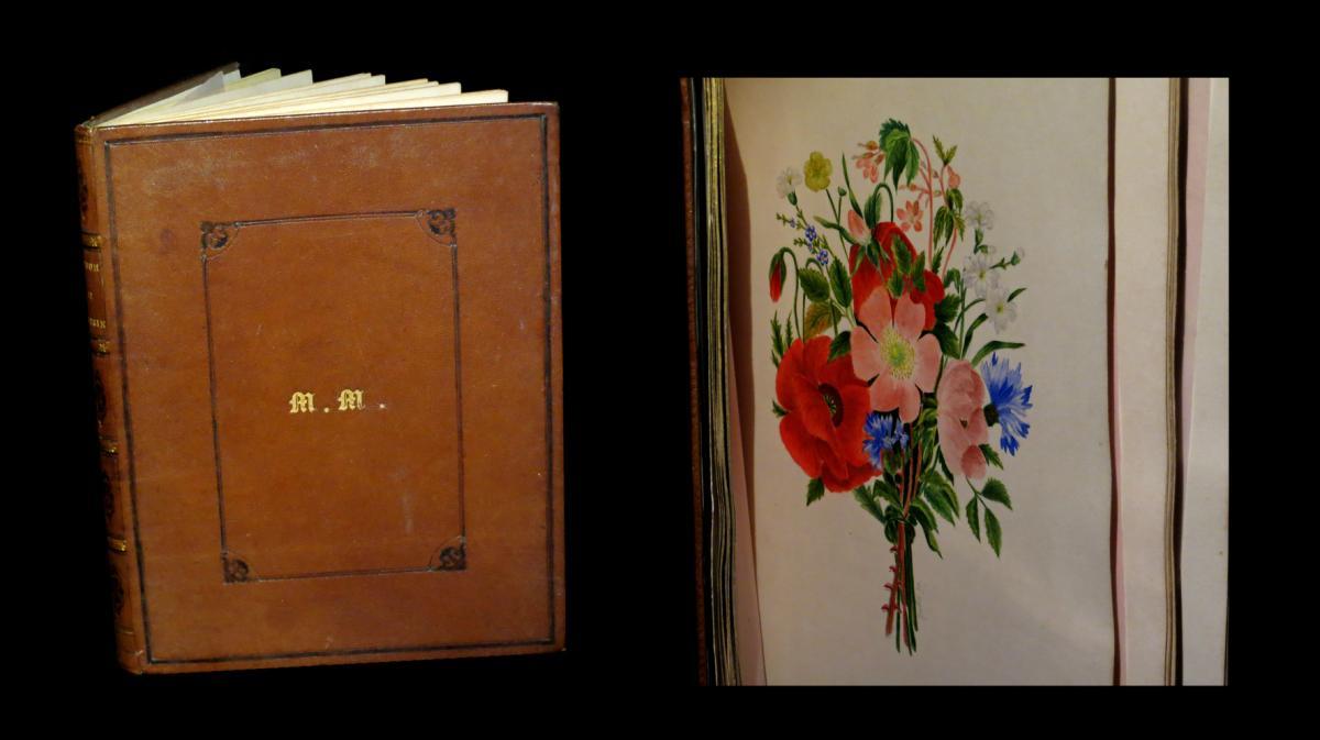 [botanique Reliure] Album De Délicats Dessins Originaux. 1872.