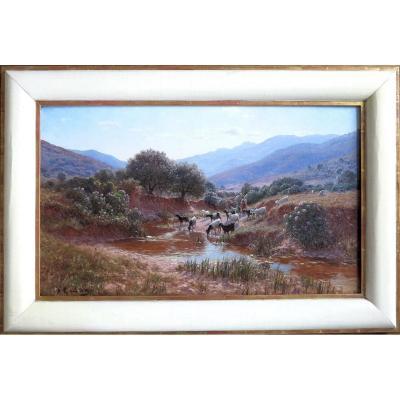 Antoine Gadan (1854–1934) - Around Bône, Algeria - Oil On Canvas - Signed